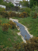 rivière noire en préparation (1)
